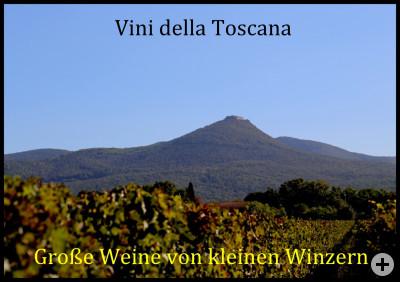 Vini della Toscana